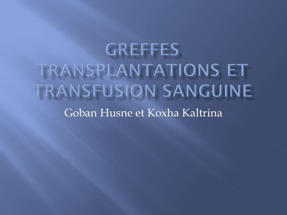 Goban Husne et Koxha Kaltrina