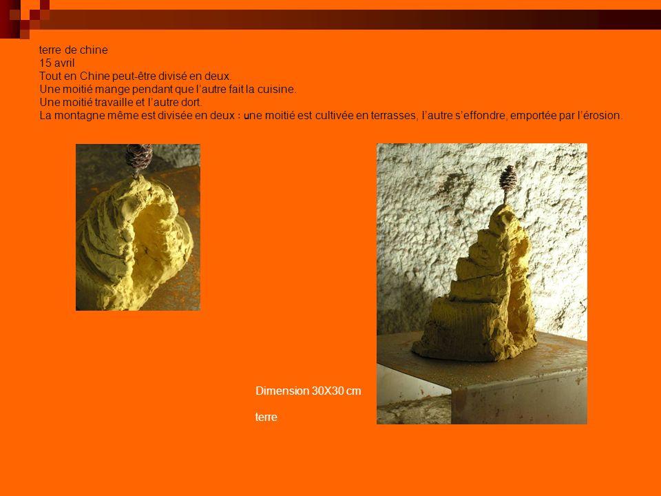 par delà la terre et le temps 5000 ans dun génie laborieux, obstiné, dérisoire… Equilibre fragile dune formidable éraflure sur la Terre généreuse Dimension 300*50*120 cm métal