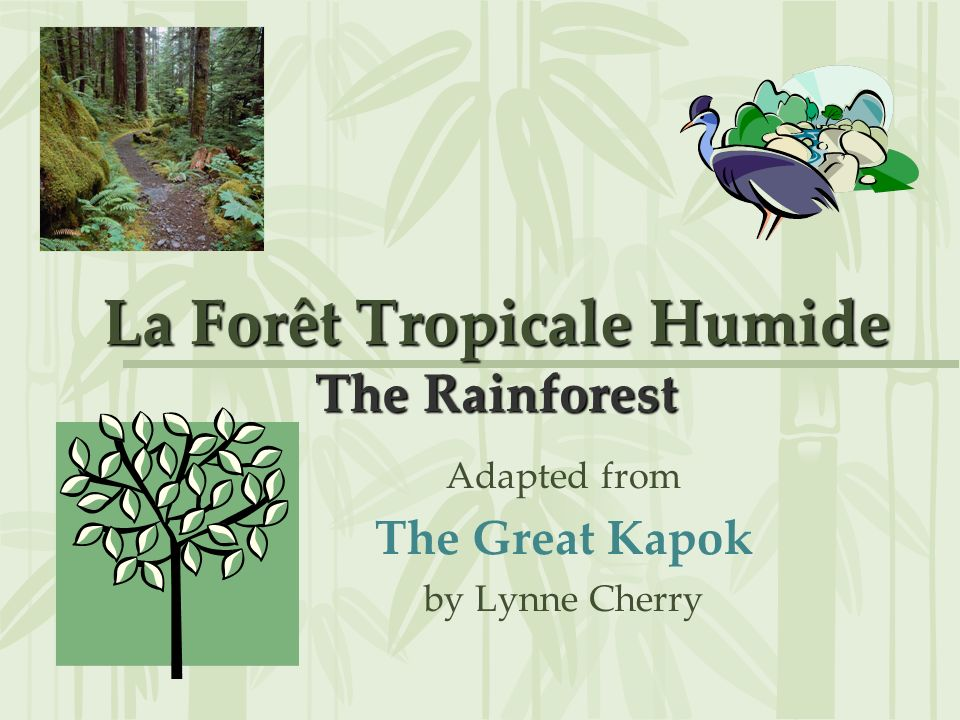 La Forêt Tropicale Humide The Rainforest Adapted from The Great Kapok by Lynne Cherry