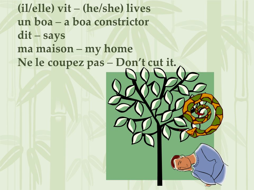 (il/elle) vit – (he/she) lives un boa – a boa constrictor dit – says ma maison – my home Ne le coupez pas – Dont cut it.