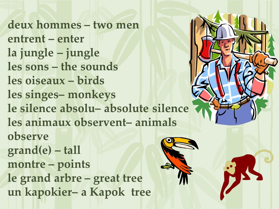 deux hommes – two men entrent – enter la jungle – jungle les sons – the sounds les oiseaux – birds les singes– monkeys le silence absolu– absolute silence les animaux observent– animals observe grand(e) – tall montre – points le grand arbre – great tree un kapokier– a Kapok tree