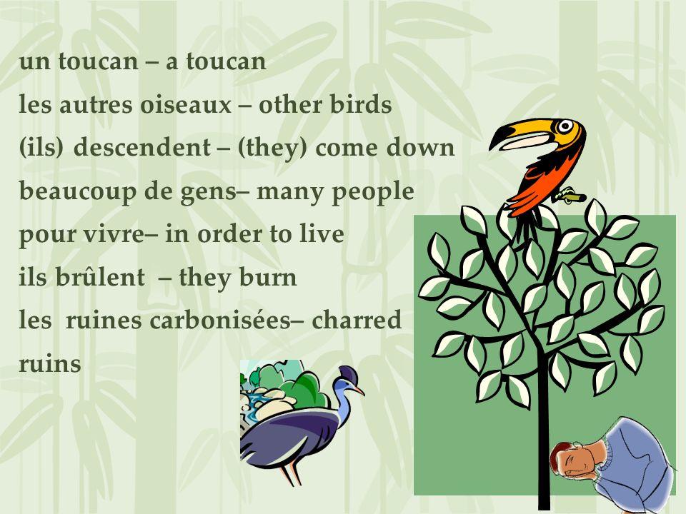 un toucan – a toucan les autres oiseaux – other birds (ils) descendent – (they) come down beaucoup de gens– many people pour vivre– in order to live i