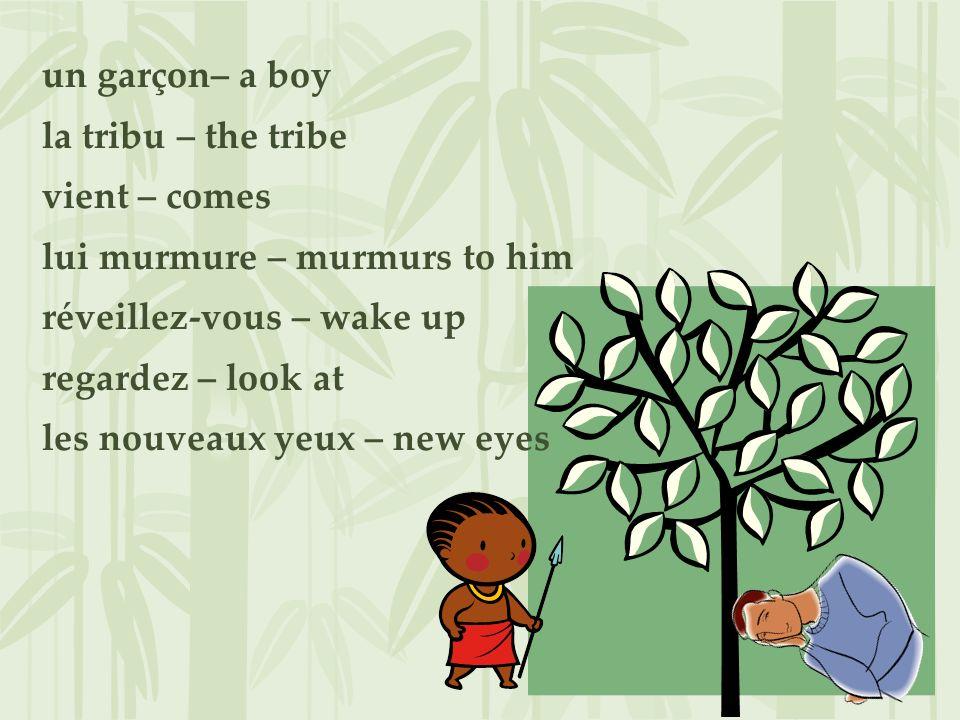 un garçon– a boy la tribu – the tribe vient – comes lui murmure – murmurs to him réveillez-vous – wake up regardez – look at les nouveaux yeux – new e