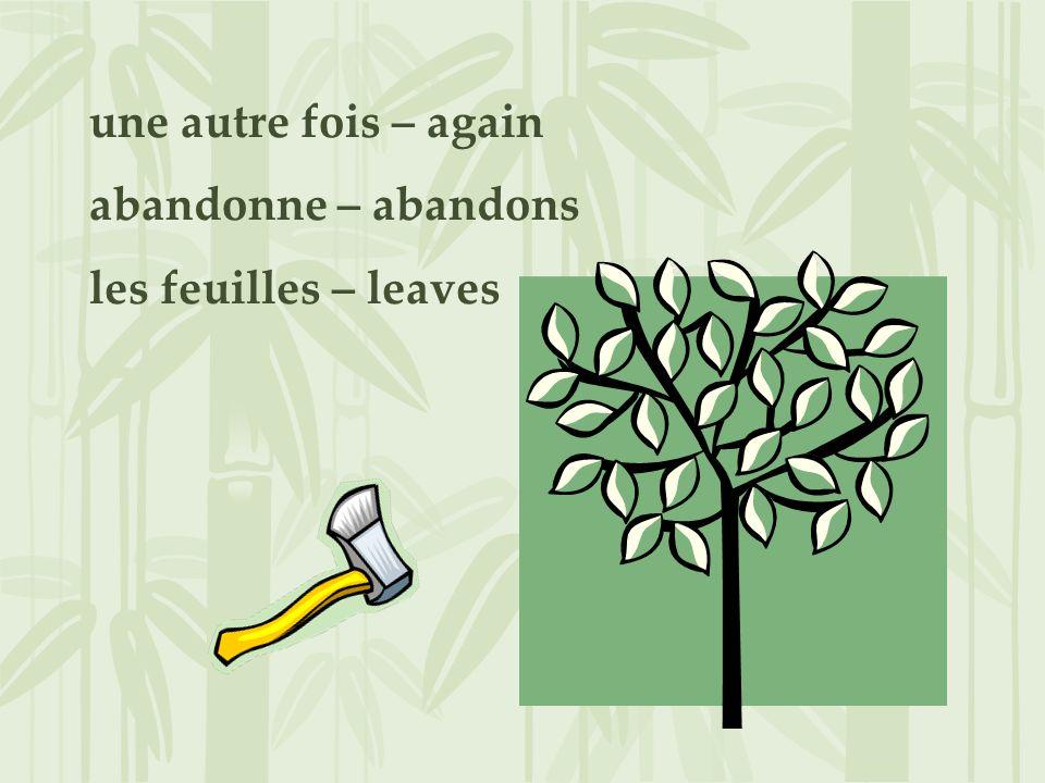 une autre fois – again abandonne – abandons les feuilles – leaves