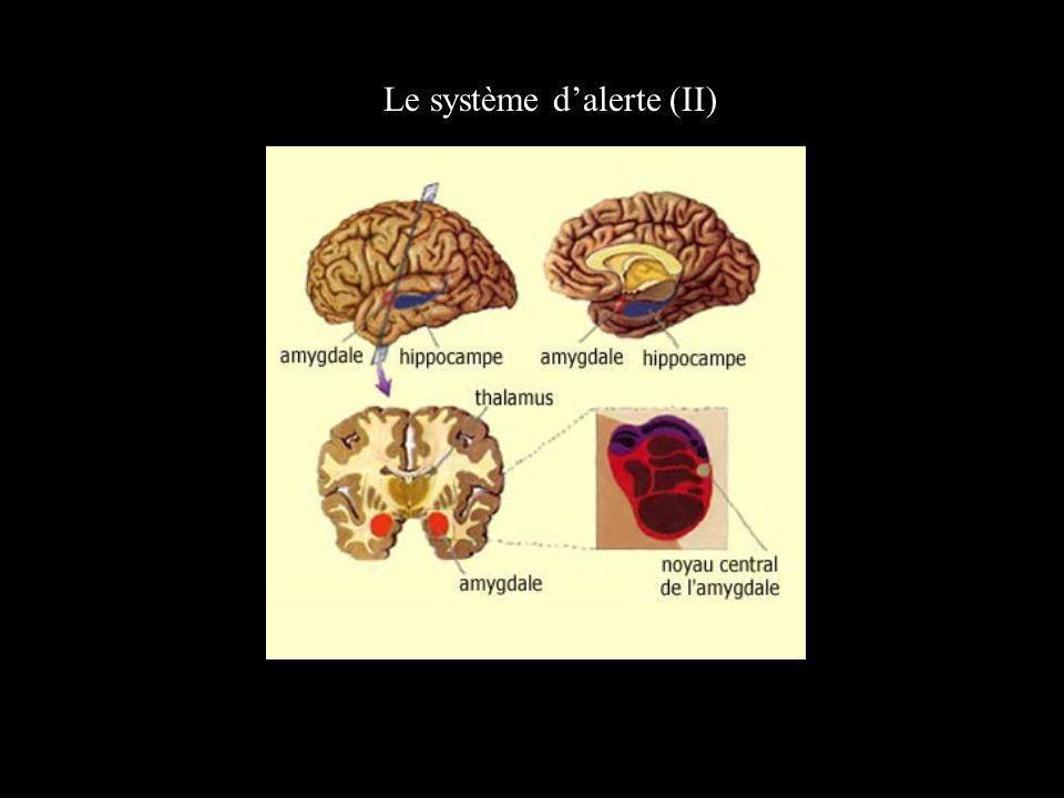 Le système dalerte (II)