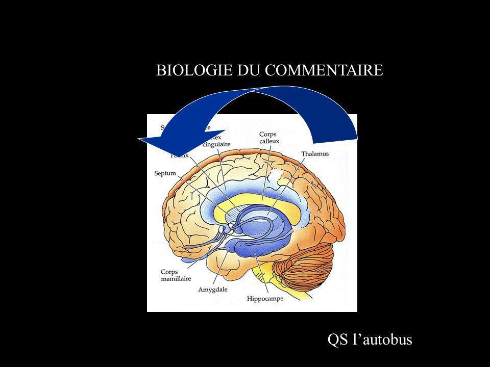 BIOLOGIE DU COMMENTAIRE QS lautobus