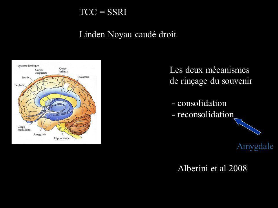 Les deux mécanismes de rinçage du souvenir - consolidation - reconsolidation Amygdale Alberini et al 2008 TCC = SSRI Linden Noyau caudé droit