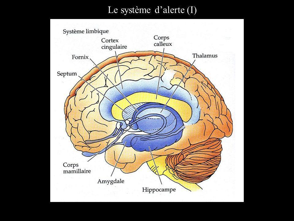 Le système dalerte (I)