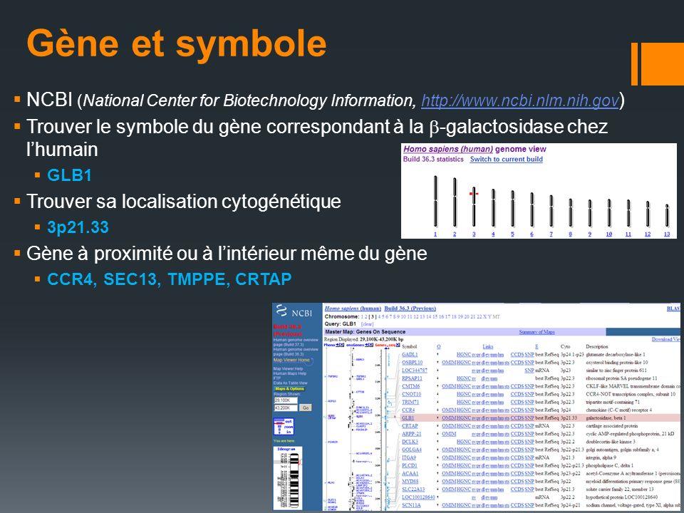 Gène et symbole NCBI (National Center for Biotechnology Information, http://www.ncbi.nlm.nih.gov ) http://www.ncbi.nlm.nih.gov Trouver le symbole du g