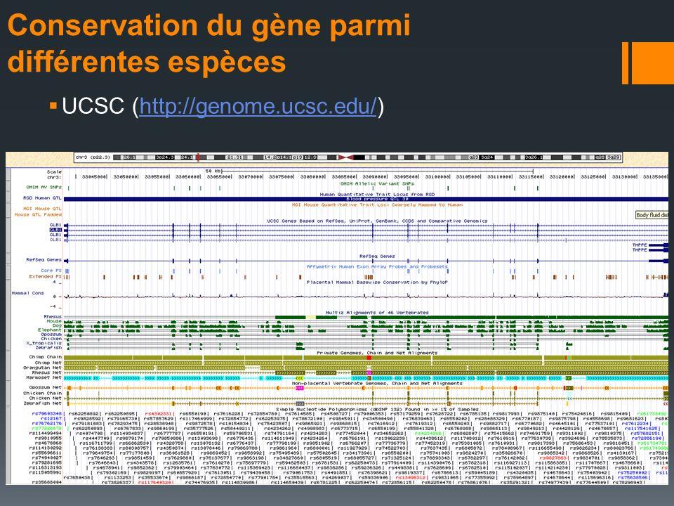 Conservation du gène parmi différentes espèces UCSC (http://genome.ucsc.edu/)http://genome.ucsc.edu/