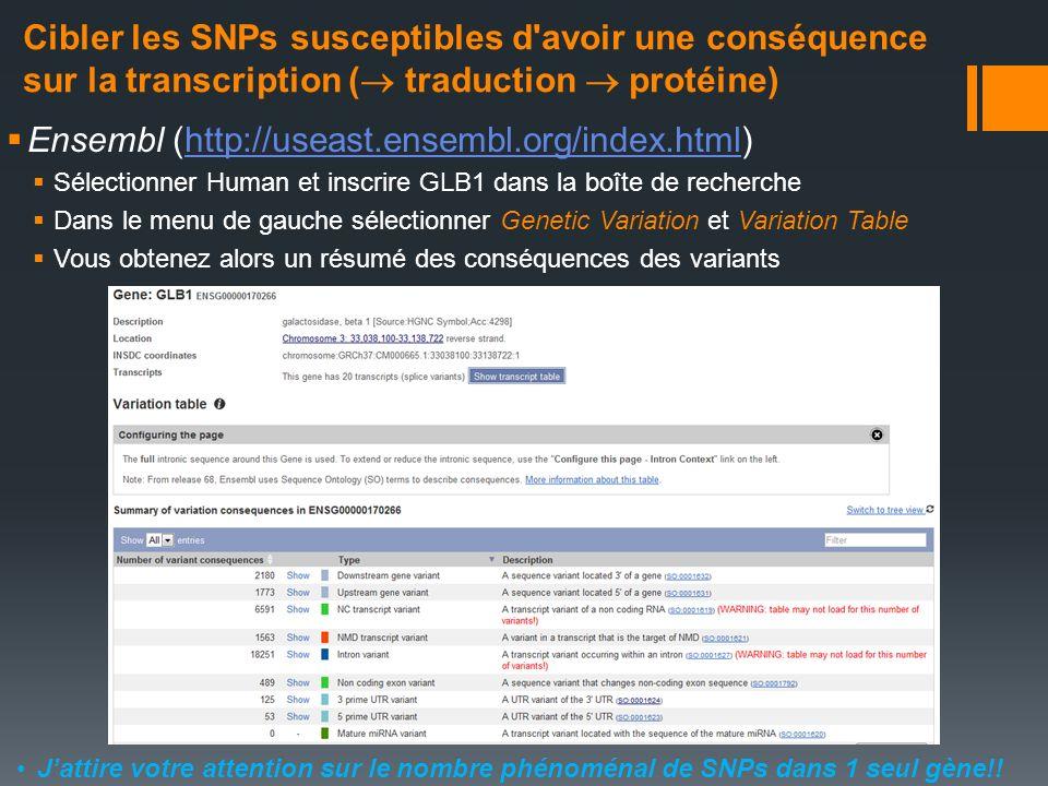 Ensembl (http://useast.ensembl.org/index.html)http://useast.ensembl.org/index.html Sélectionner Human et inscrire GLB1 dans la boîte de recherche Dans