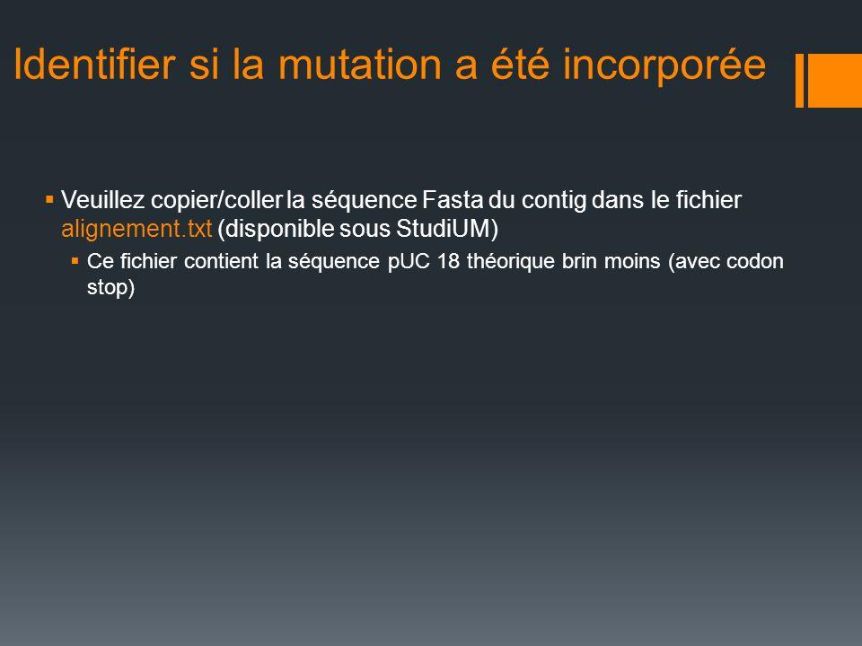 Identifier si la mutation a été incorporée Veuillez copier/coller la séquence Fasta du contig dans le fichier alignement.txt (disponible sous StudiUM)