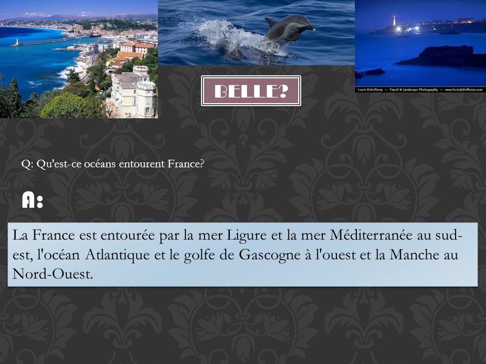 La France est entourée par la mer Ligure et la mer Méditerranée au sud- est, l'océan Atlantique et le golfe de Gascogne à l'ouest et la Manche au Nord