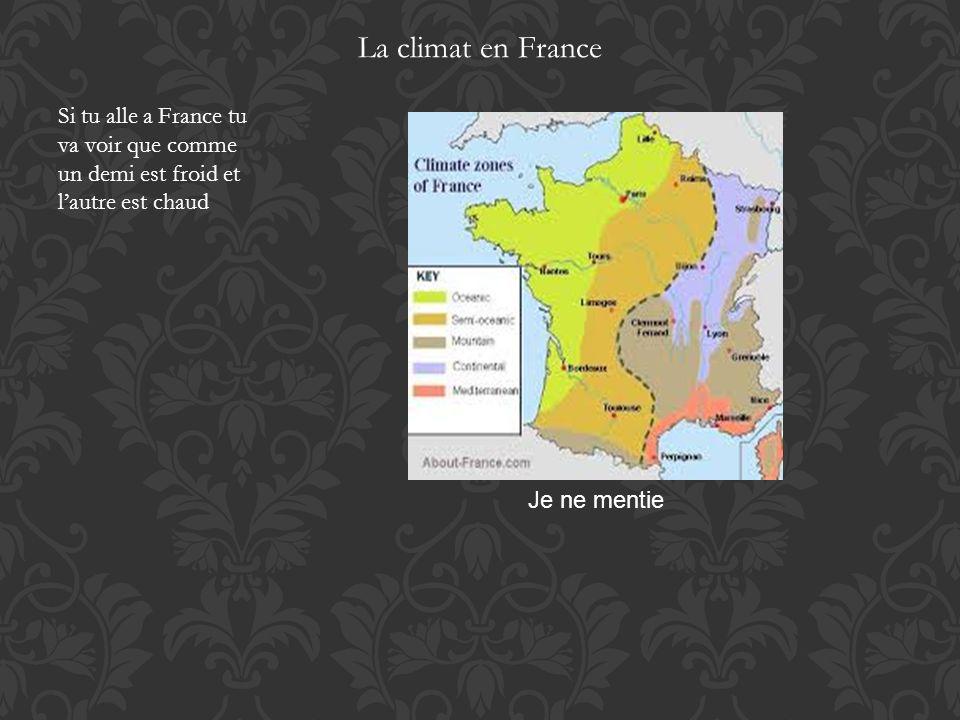 La climat en France Si tu alle a France tu va voir que comme un demi est froid et lautre est chaud Je ne mentie