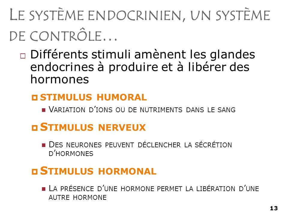 13 L E SYSTÈME ENDOCRINIEN, UN SYSTÈME DE CONTRÔLE … Différents stimuli amènent les glandes endocrines à produire et à libérer des hormones STIMULUS HUMORAL V ARIATION D IONS OU DE NUTRIMENTS DANS LE SANG S TIMULUS NERVEUX D ES NEURONES PEUVENT DÉCLENCHER LA SÉCRÉTION D HORMONES S TIMULUS HORMONAL L A PRÉSENCE D UNE HORMONE PERMET LA LIBÉRATION D UNE AUTRE HORMONE