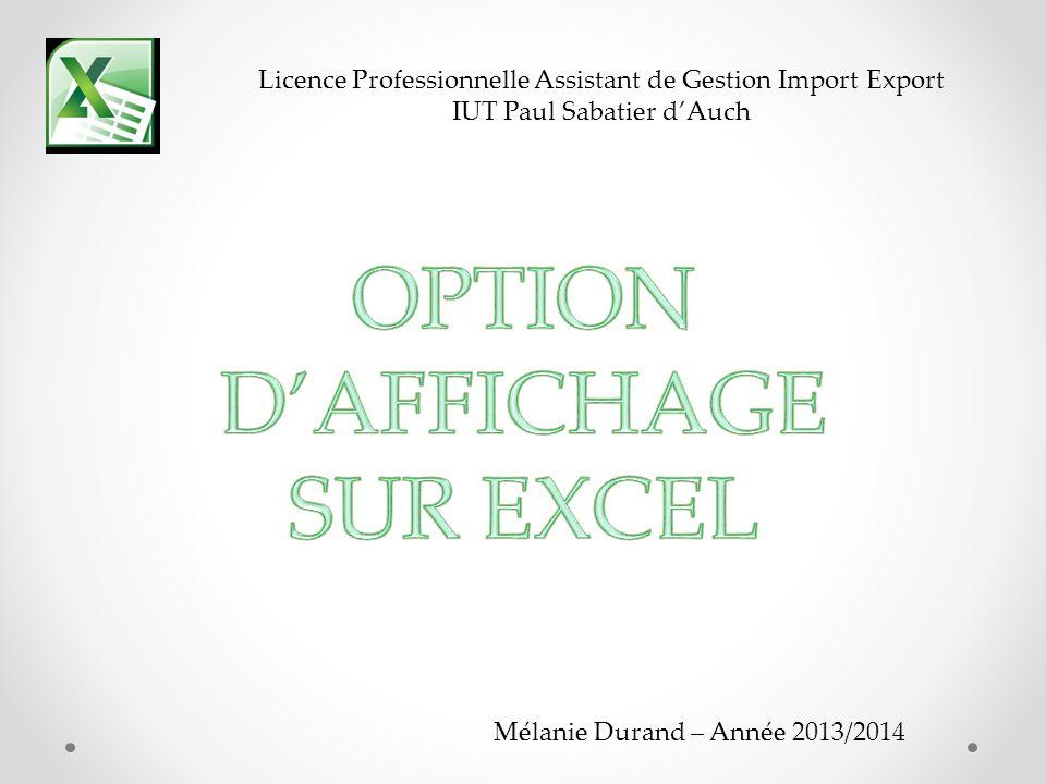 Mélanie Durand – Année 2013/2014 Licence Professionnelle Assistant de Gestion Import Export IUT Paul Sabatier dAuch