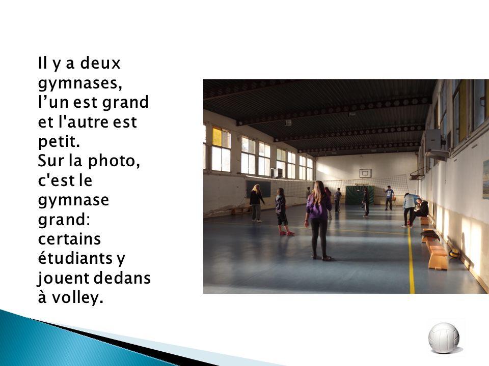 Il y a deux gymnases, lun est grand et l'autre est petit. Sur la photo, c'est le gymnase grand: certains étudiants y jouent dedans à volley.