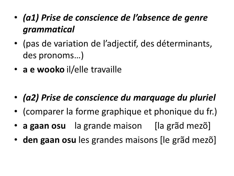 (a1) Prise de conscience de labsence de genre grammatical (pas de variation de ladjectif, des déterminants, des pronoms…) a e wooko il/elle travaille