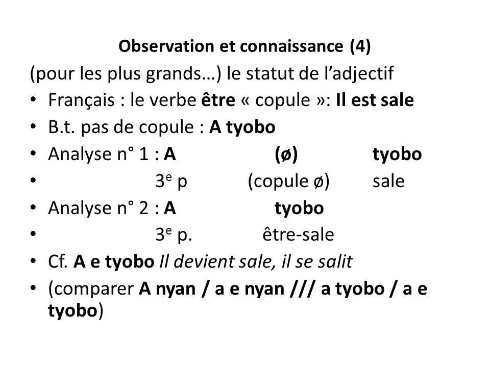 Observation et connaissance (4) (pour les plus grands…) le statut de ladjectif Français : le verbe être « copule »: Il est sale B.t. pas de copule : A