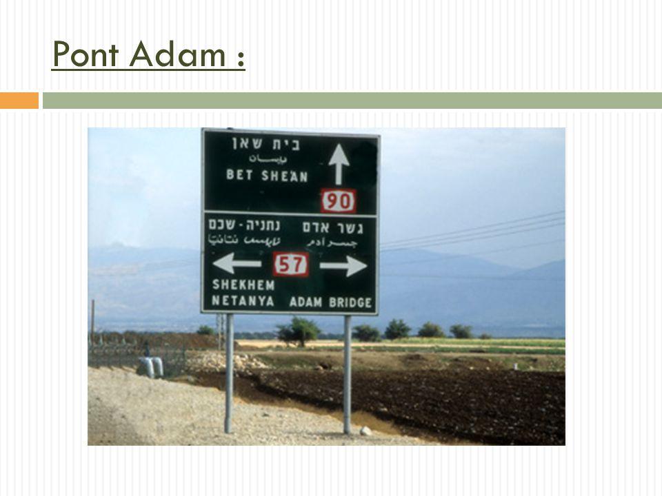 Pont Adam :