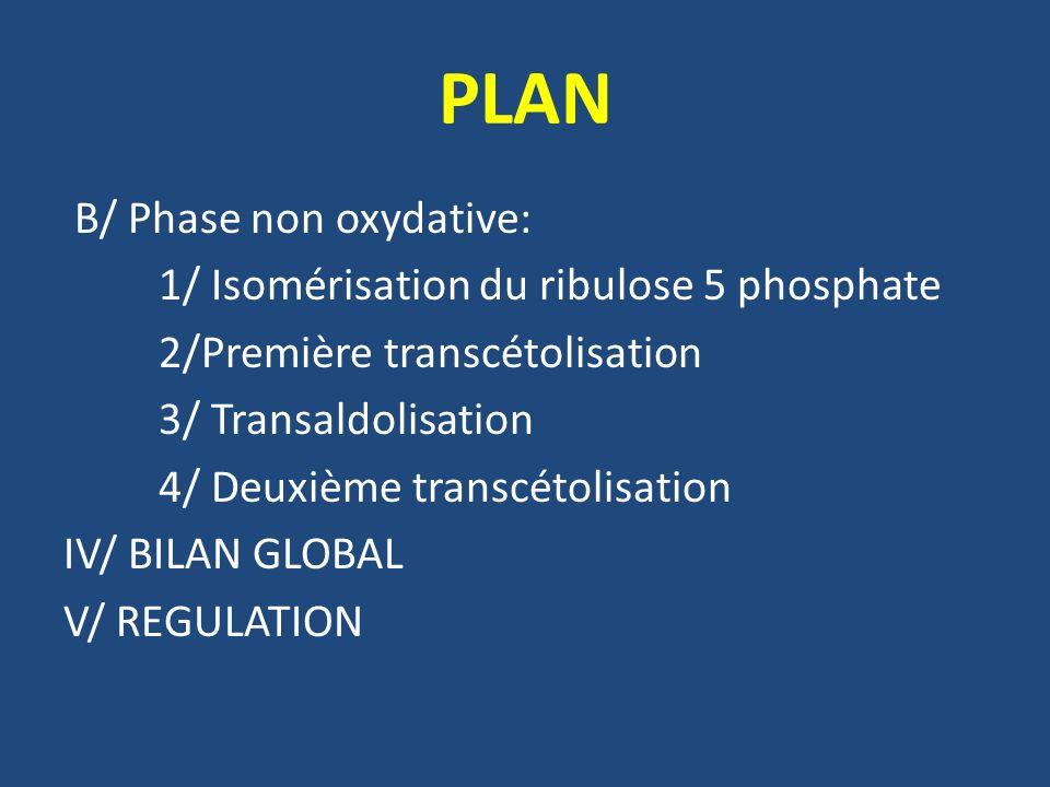 PLAN B/ Phase non oxydative: 1/ Isomérisation du ribulose 5 phosphate 2/Première transcétolisation 3/ Transaldolisation 4/ Deuxième transcétolisation IV/ BILAN GLOBAL V/ REGULATION