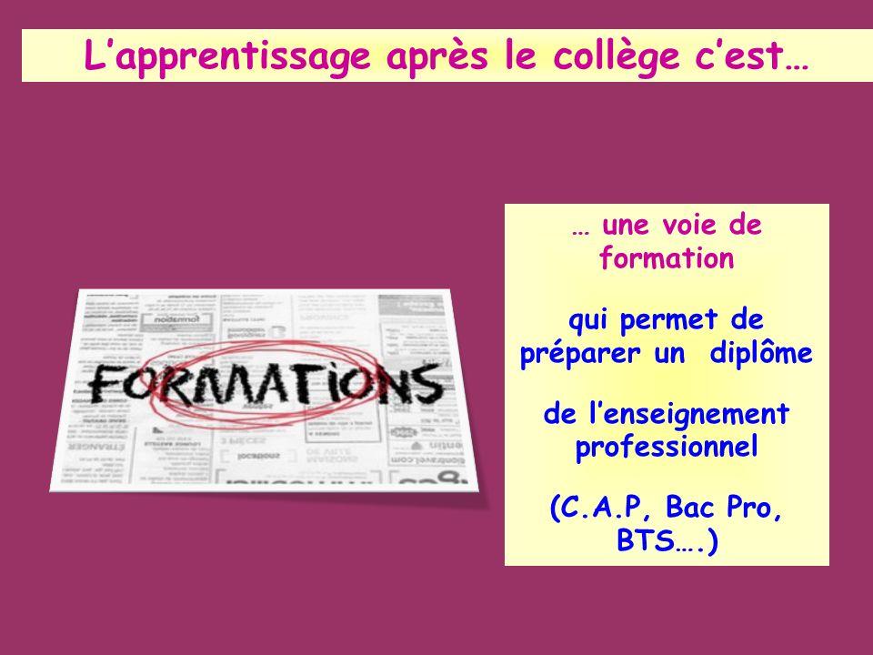 Lapprentissage après le collège cest… … une voie de formation qui permet de préparer un diplôme de lenseignement professionnel (C.A.P, Bac Pro, BTS….)
