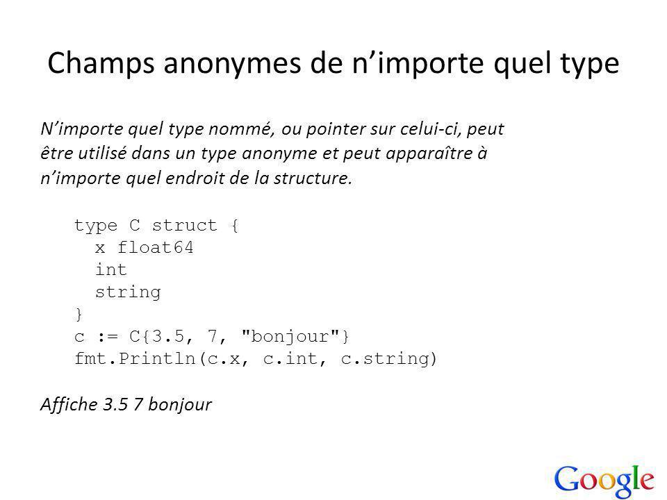 Champs anonymes de nimporte quel type Nimporte quel type nommé, ou pointer sur celui-ci, peut être utilisé dans un type anonyme et peut apparaître à nimporte quel endroit de la structure.