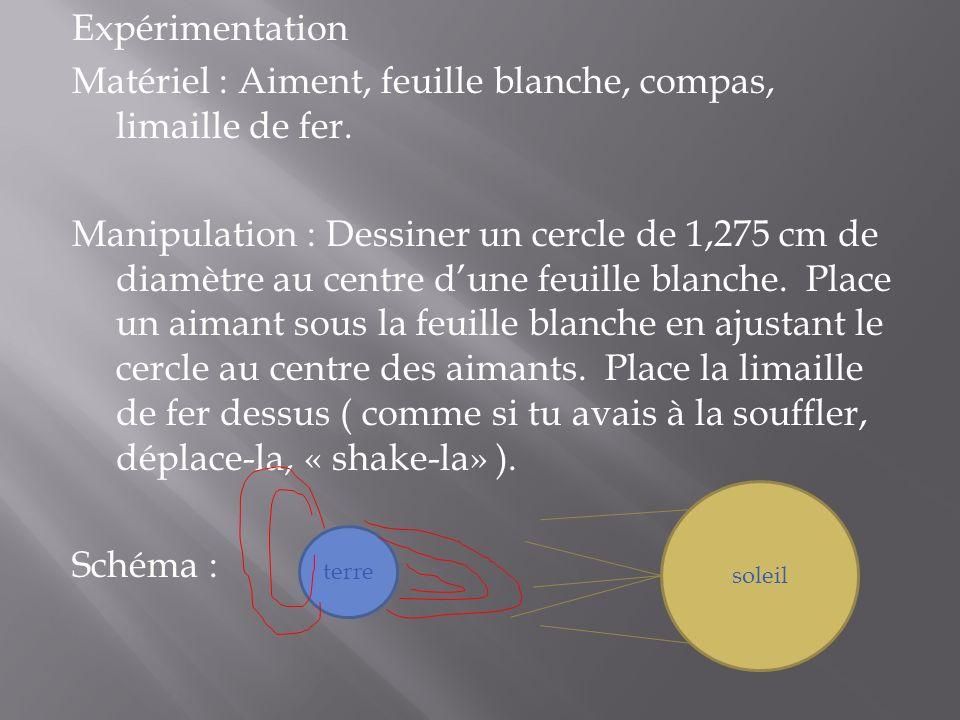 Expérimentation Matériel : Aiment, feuille blanche, compas, limaille de fer.