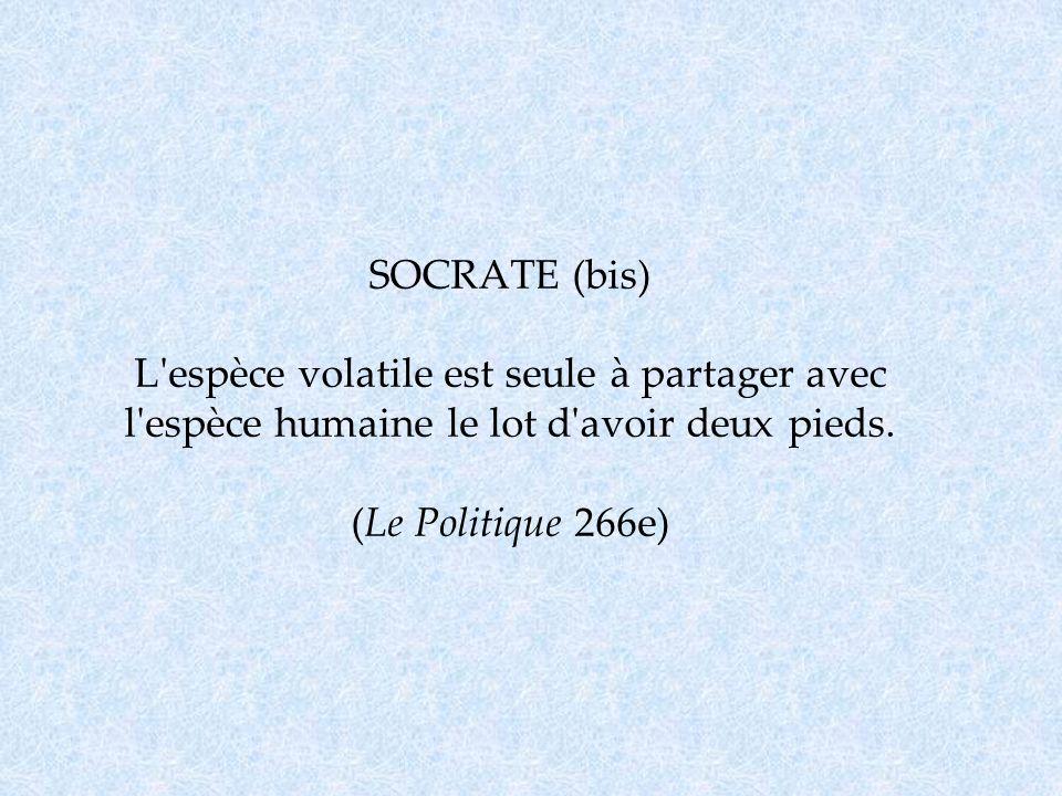 SOCRATE (bis) L'espèce volatile est seule à partager avec l'espèce humaine le lot d'avoir deux pieds. (Le Politique 266e)
