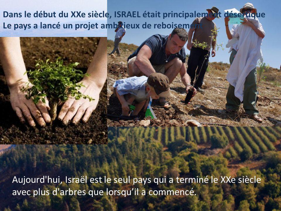 En raison de la grave pénurie d'eau, les agronomes d'Israël ont créé un système révolutionnaire de l'irrigation au goutte à goutte, maintenant utilisé