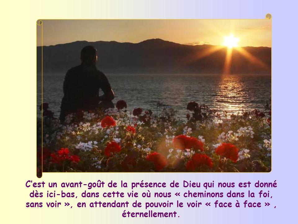Leffet de cette pureté, toujours à reconquérir, est de nous permettre de « voir » Dieu, ce qui signifie comprendre son action dans notre vie et dans l