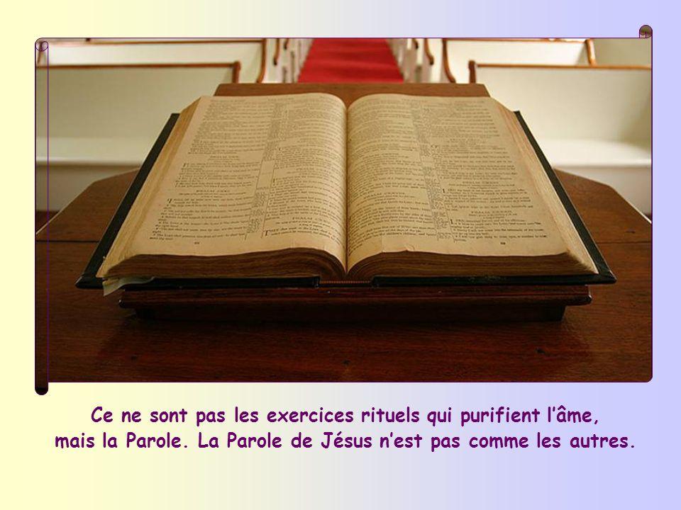 Selon Jésus, un moyen de purification lemporte sur tous les autres : « Déjà vous êtes émondés par la Parole que je vous ai dite »