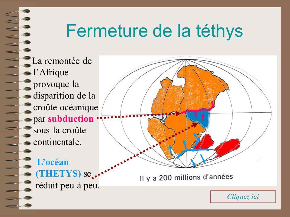 Fermeture de la téthys La remontée de lAfrique provoque la disparition de la croûte océanique par subduction sous la croûte continentale. Locéan (THET