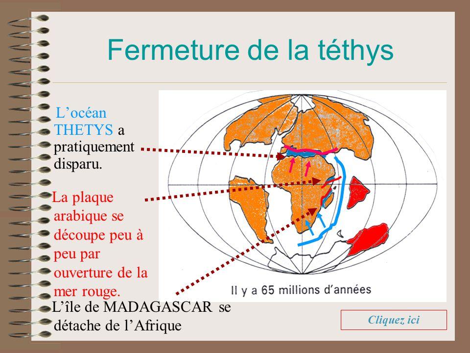 Locéan THETYS a pratiquement disparu. Fermeture de la téthys La plaque arabique se découpe peu à peu par ouverture de la mer rouge. Lîle de MADAGASCAR