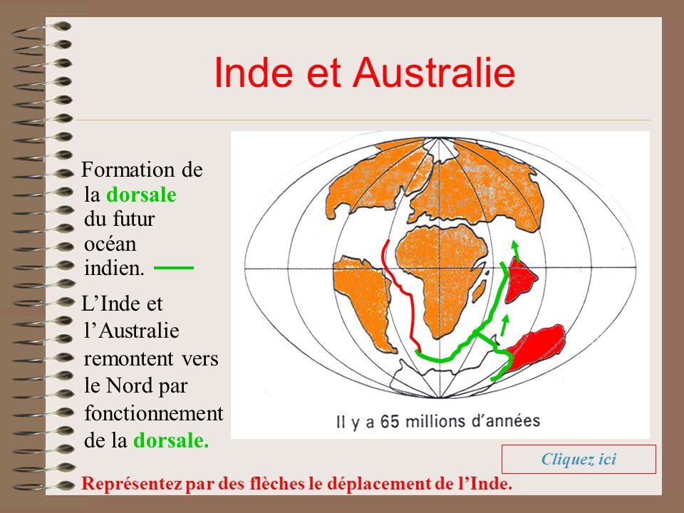 Inde et Australie Formation de la dorsale du futur océan indien. LInde et lAustralie remontent vers le Nord par fonctionnement de la dorsale. Représen