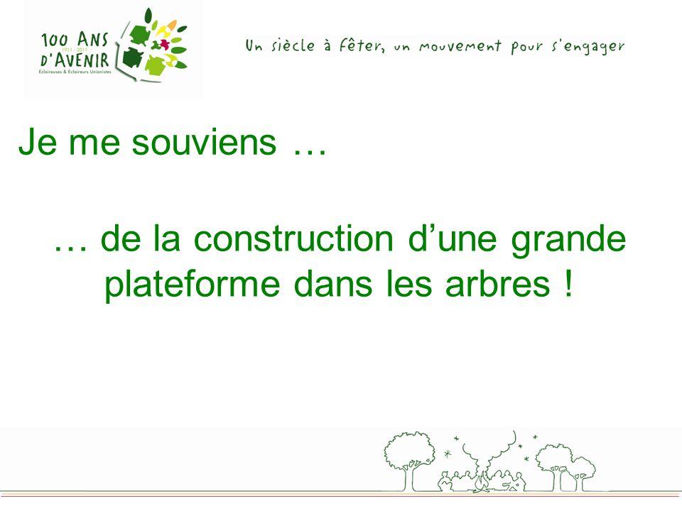 Je me souviens … … de la construction dune grande plateforme dans les arbres !
