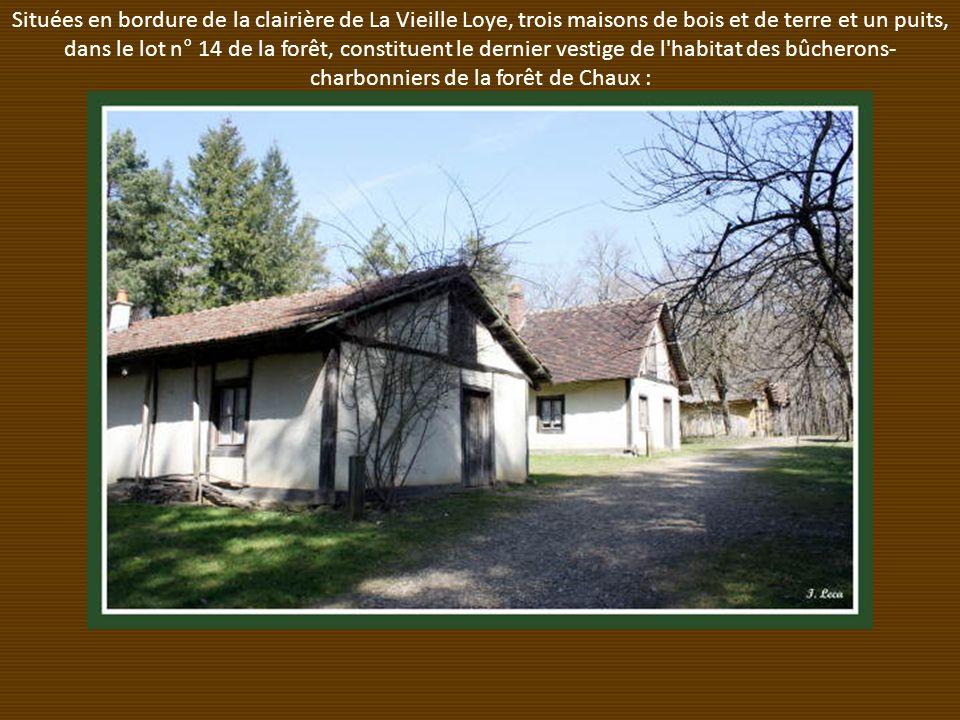 Situées en bordure de la clairière de La Vieille Loye, trois maisons de bois et de terre et un puits, dans le lot n° 14 de la forêt, constituent le dernier vestige de l habitat des bûcherons- charbonniers de la forêt de Chaux :