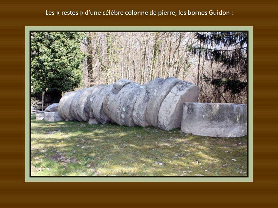 Les « restes » dune célèbre colonne de pierre, les bornes Guidon :
