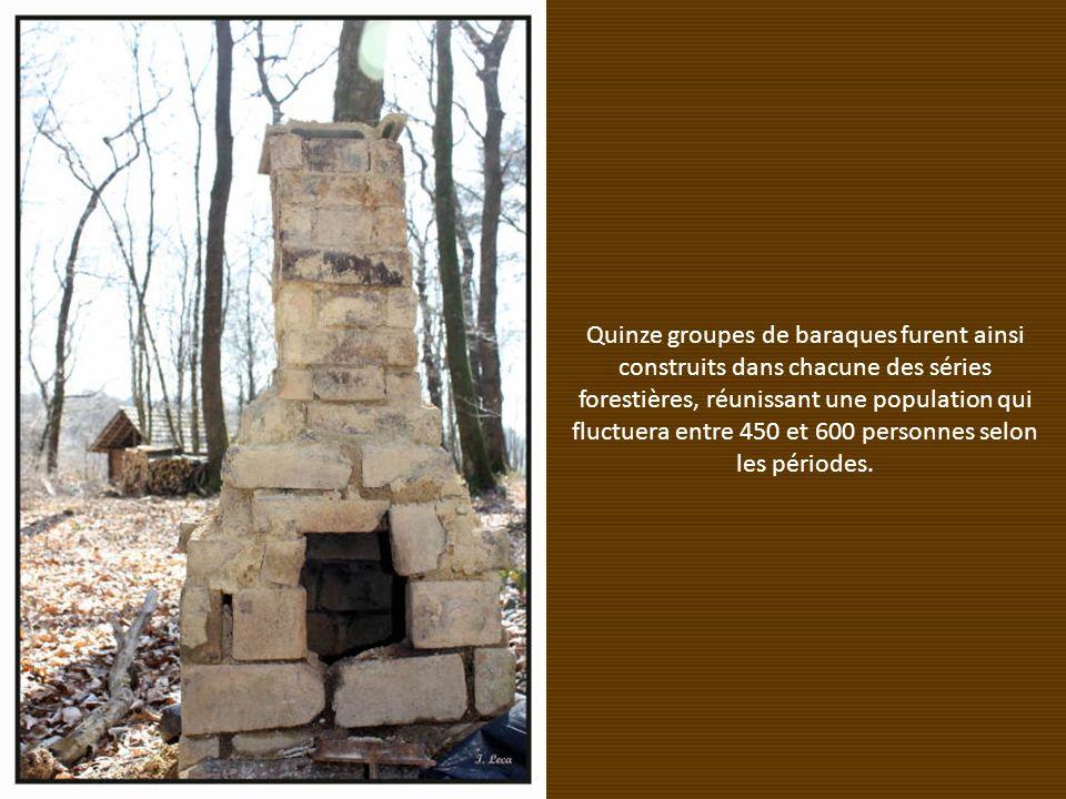 Quinze groupes de baraques furent ainsi construits dans chacune des séries forestières, réunissant une population qui fluctuera entre 450 et 600 personnes selon les périodes.