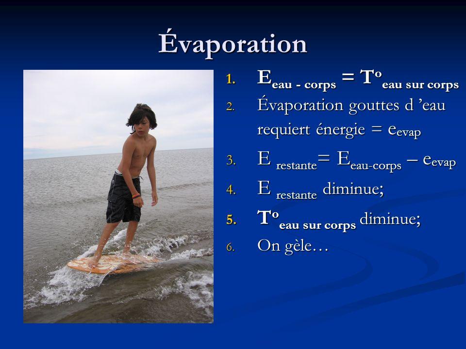 Évaporation 1.E eau - corps = T o eau sur corps 2.