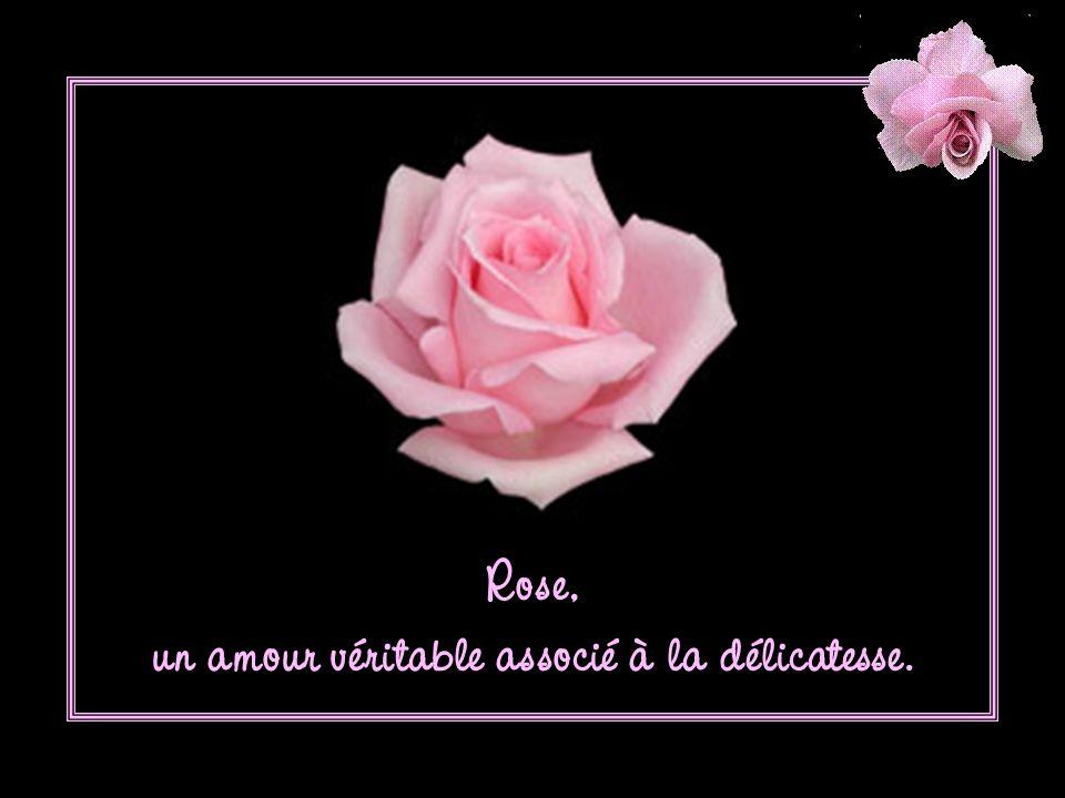 Rose, un amour véritable associé à la délicatesse.