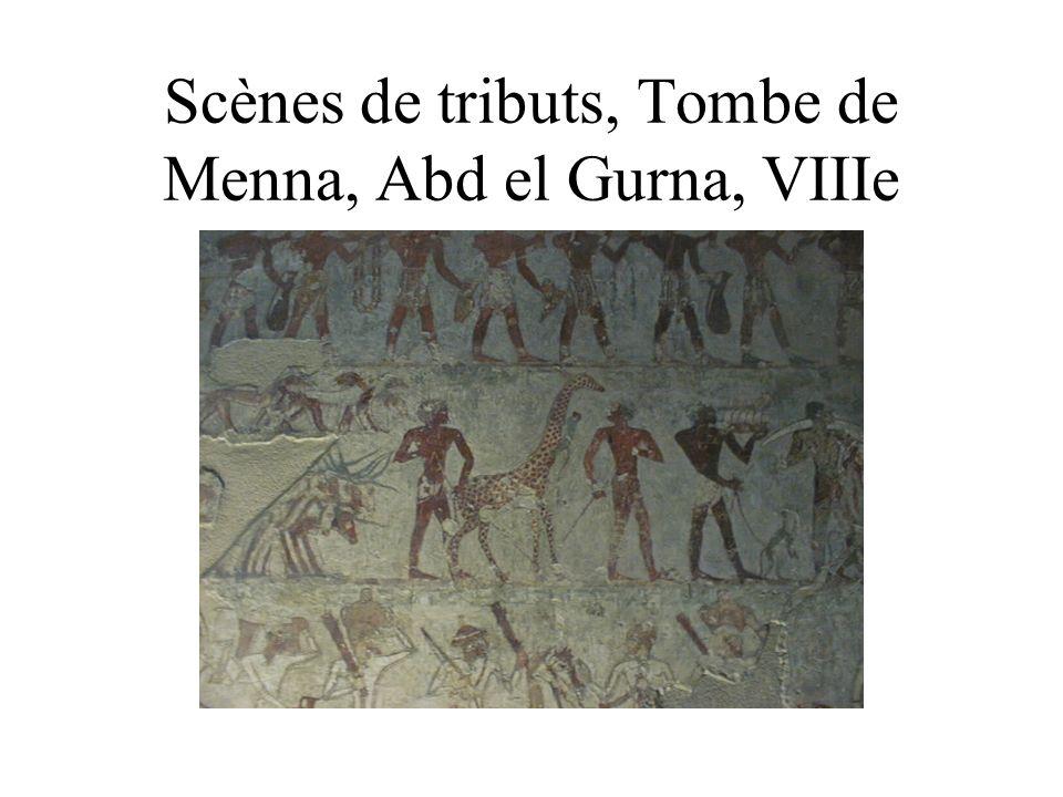 Scènes de tributs, Tombe de Menna, Abd el Gurna, VIIIe