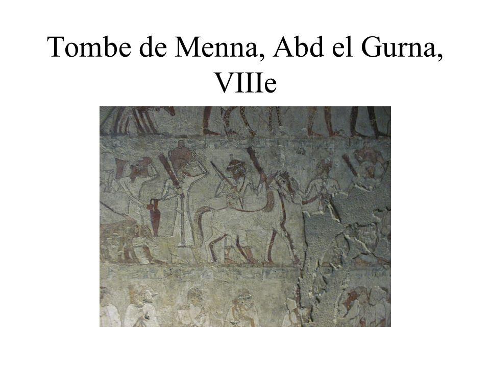 Tombe de Menna, Abd el Gurna, VIIIe