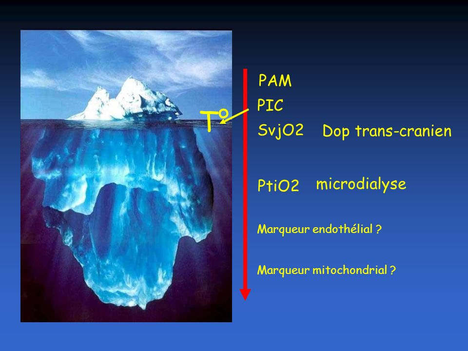 PAM PIC SvjO2 PtiO2 Dop trans-cranien microdialyse Marqueur endothélial ? Marqueur mitochondrial ? T°