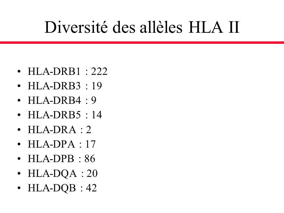 Diversité des allèles HLA II HLA-DRB1 : 222 HLA-DRB3 : 19 HLA-DRB4 : 9 HLA-DRB5 : 14 HLA-DRA : 2 HLA-DPA : 17 HLA-DPB : 86 HLA-DQA : 20 HLA-DQB : 42