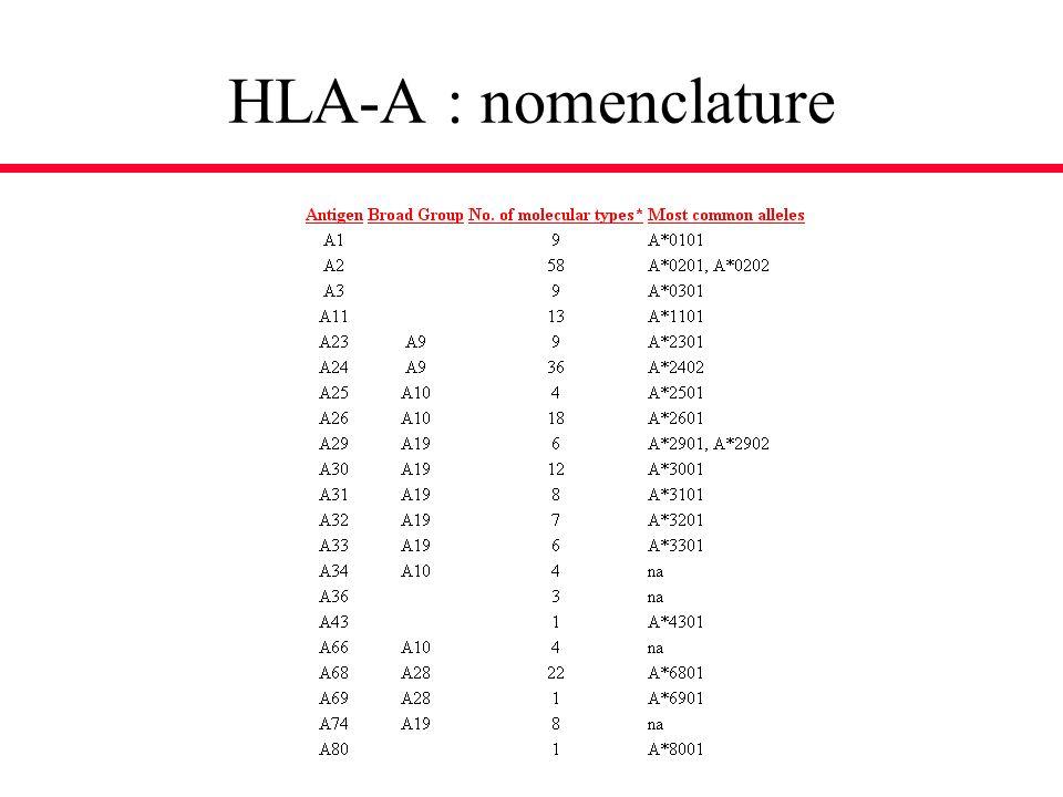 HLA-A : nomenclature