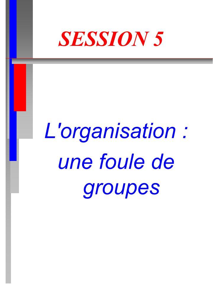 SESSION 5 L'organisation : une foule de groupes
