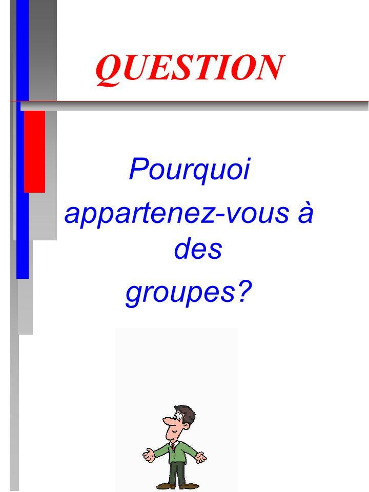 QUESTION Pourquoi appartenez-vous à des groupes?