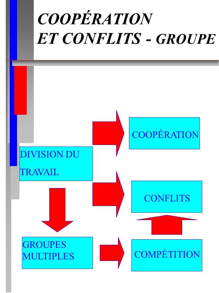 COOPÉRATION ET CONFLITS - GROUPE DIVISION DU TRAVAIL GROUPES MULTIPLES COMPÉTITION CONFLITS COOPÉRATION