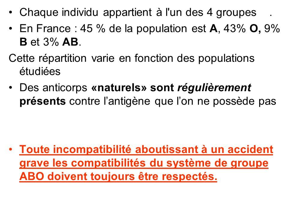 Chaque individu appartient à l'un des 4 groupes. En France : 45 % de la population est A, 43% O, 9% B et 3% AB. Cette répartition varie en fonction de